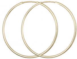 Χρυσοί Κρίκοι ΤΤ018051